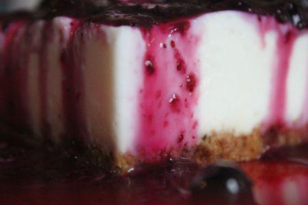 jean + cheesecake 024