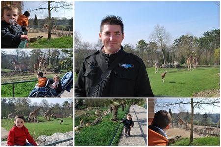 2010_04_11_zoo_de_Beauval3