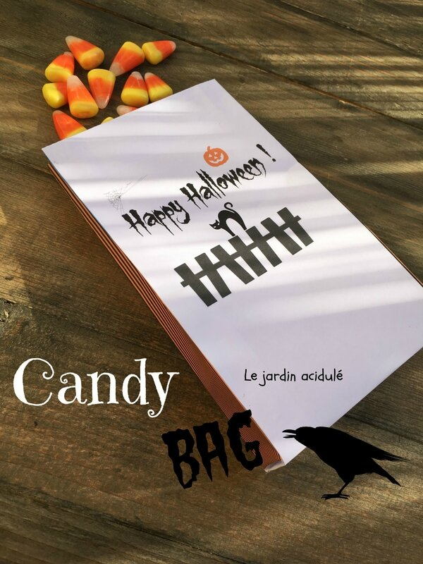 Candy bag 12