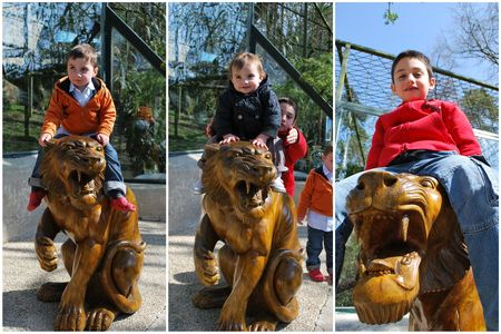 2010_04_11_zoo_de_Beauval12
