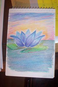 Lotus_Bleu_1