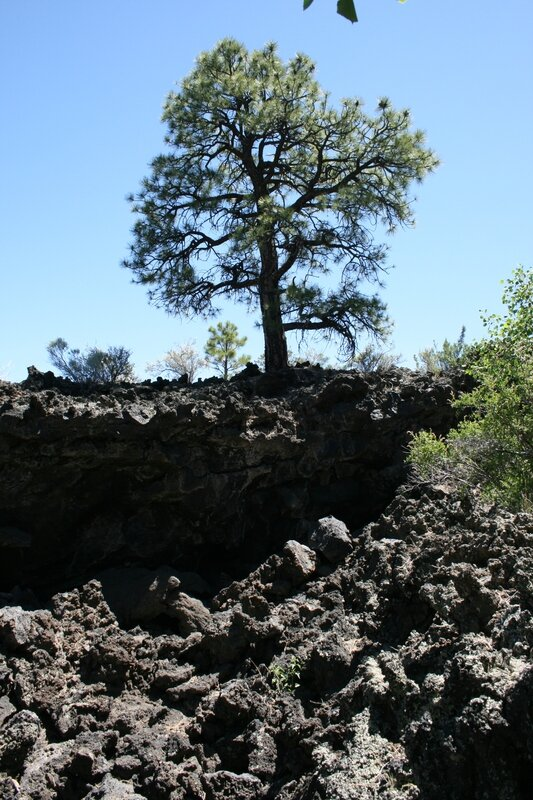 20140605_sunset_crater_volcano_08