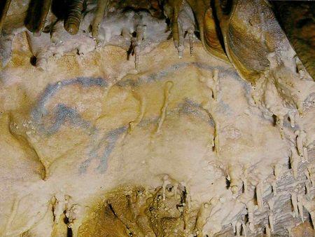 horsecalcite
