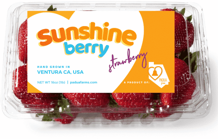Sunshine-Berry-Packaging