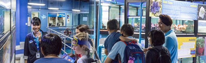 Behind-the-scene tour in Sea Life Bangkok