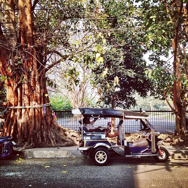 A Tuk tuk parking under a tree