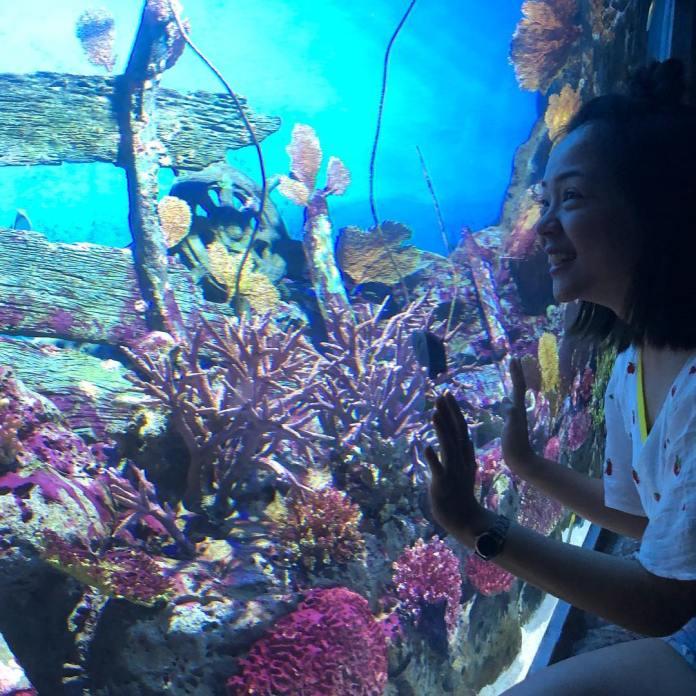 Ngắm rạn san hô ở Sea Life Bangkok Ocean World