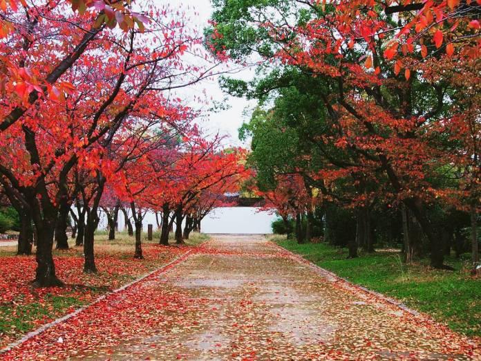 Khu vườn Nishinomaru