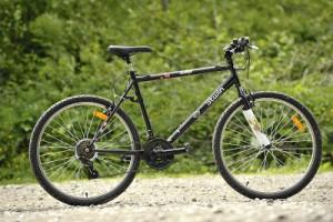 Rock Rider 5.0