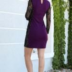 Lace Detail Purple Short Evening Dress