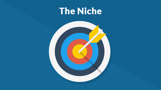 The 10 Types of Popular Blogs: The Niche