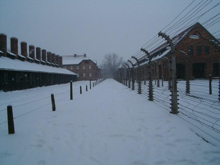 Auschwitz corridoio filo spinato