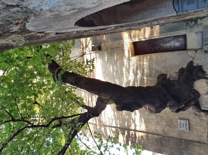 bagnoli irpino