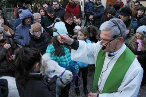 querceto benedizione animali (25)