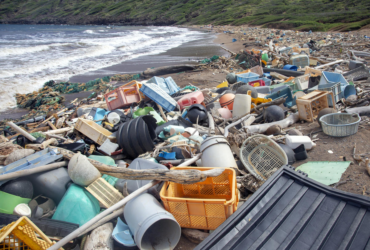 Inspired To Tackle Plastic Pollution Try A Brand Audit