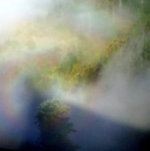 The Specter of Brocken, or a Rainbow Shadow, spotted looking downwards and eastwards in eveningtime, from the summit of Saddle Mountain, Oregon Coast Range, USA