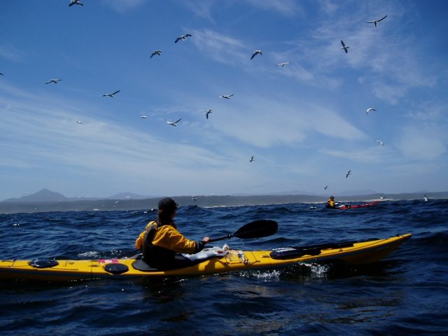 Circumnavigation of Tasmania - Photos via Justine Curgenven -16