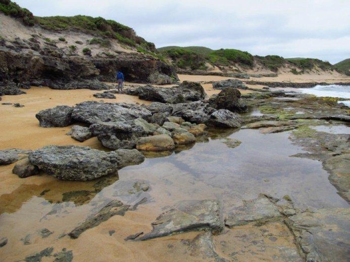 The Tasmanian West Coast 15