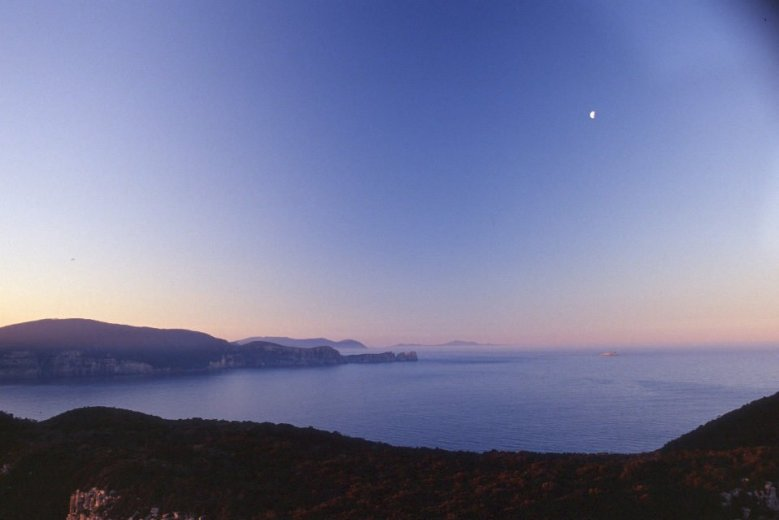 Evening view across Munro bight from the Cape Pillar track - by Angus Munro