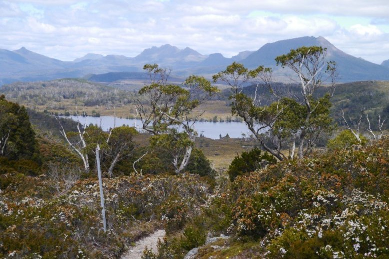 Lake Windermere, on the Overland Track, Tasmania