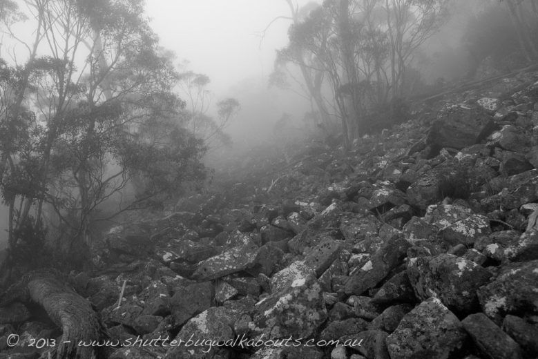 Foggy morning in a dolerite boulder field-Wellington Park-Mt Wellington- by Shutterbug Walkabouts