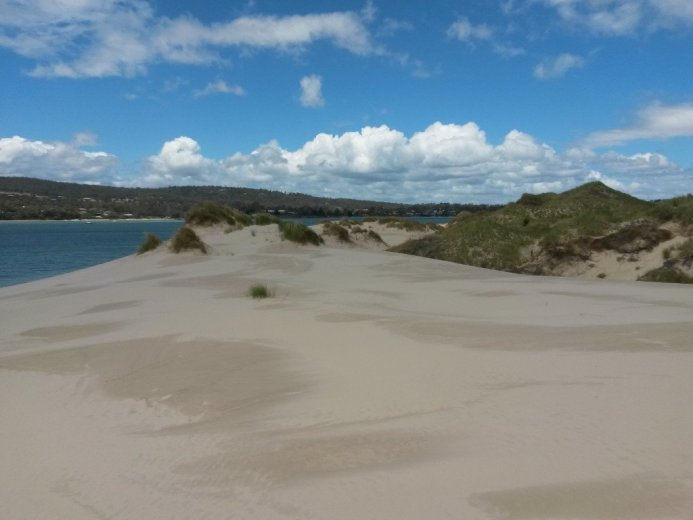 The sandy plain is kept clear by constant winds - At Five Mile Beach