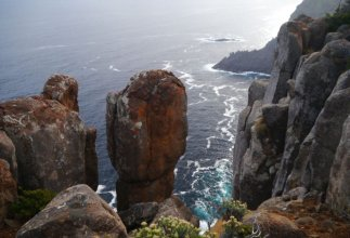 At the top of Cape Raoul, Tasman National Park-310