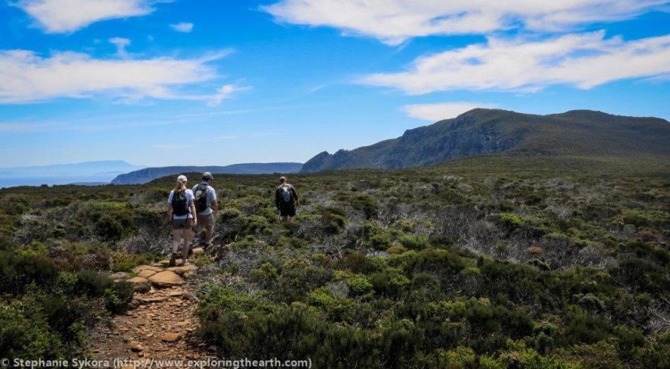 Dolerite Pillars at Cape Raoul - Courtesy ExploringTheEarth (2)
