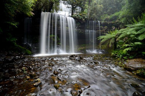 Russell Falls - On a rainy Tasmanian dayhike with my mother, I could only manage one photo before my lens accumulated droplets and I had to give up (because of the f/22 aperture required). Not too shabby!  - by Mike Fuller