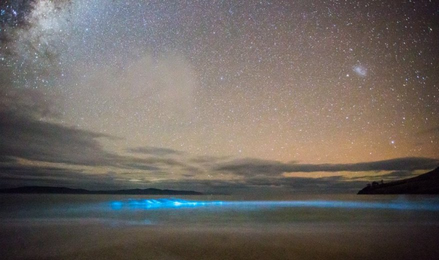 Bioluminescence at Clifton Beach 3 - by Nick Fitzgerald.jpg