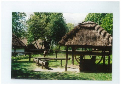 Skansen at Lublin, Poland, showing wooden structures -including well-mouth, water-trough and guttering- by Chrystine Klimek