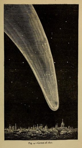 Image from Flowers of the Sky (1879) by Richard A. Proctor – - via Public Domain Review