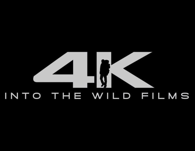 Above Tasmania in 4K - Into the Wild Films - Opener