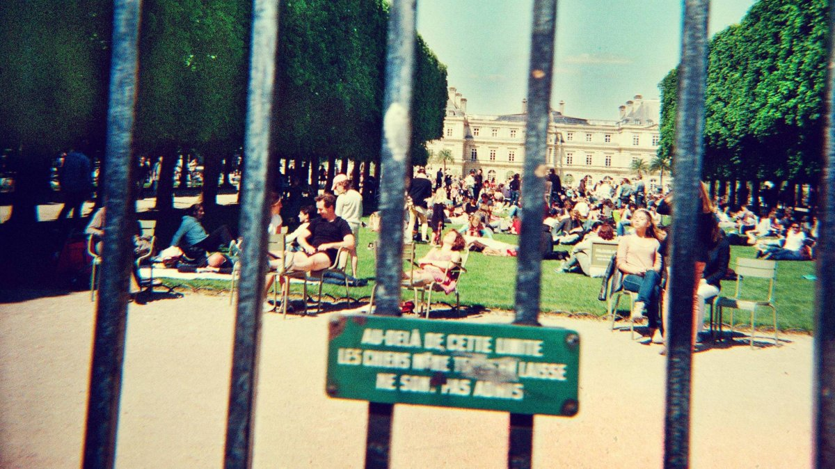 Lonerism, Tame Impala's second record.