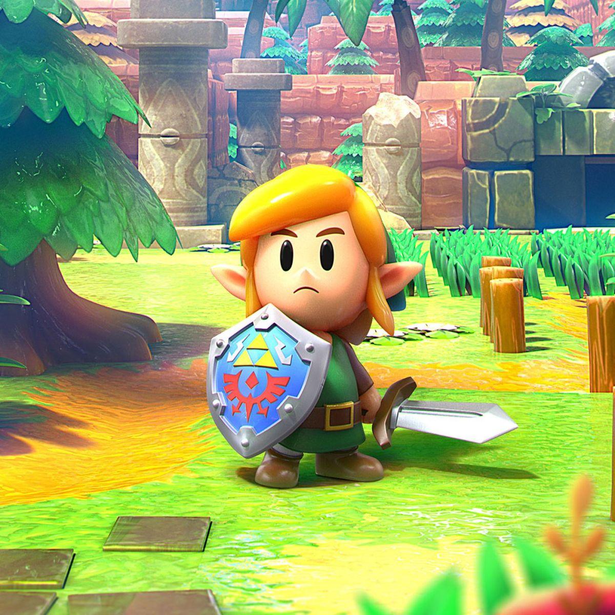 Link in the Legend Of Zelda