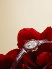 Jaeger-LeCoultre Dazzling Rendez-Vous Red