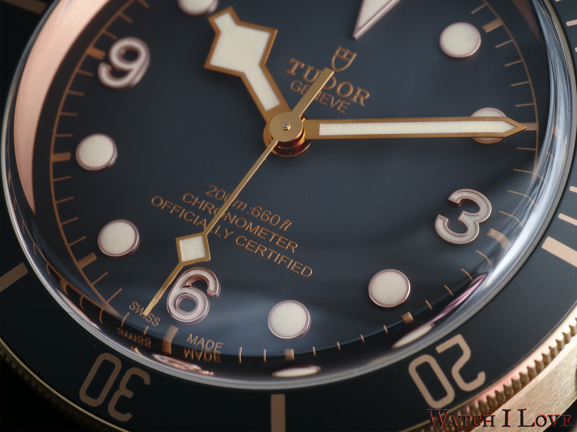 Detail of the lower side of the dial