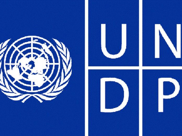50c4db9a undp logo