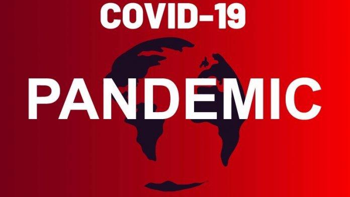 b7f663c8 coronavirus covid 19