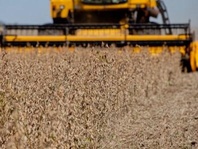 China teria ofertado cotas por 10 mi de toneladas de soja dos EUA