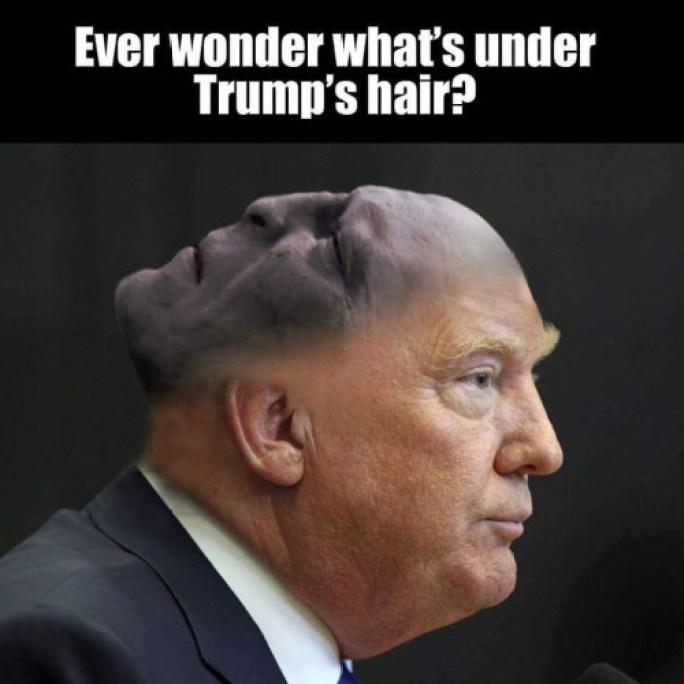 trump-voldemort