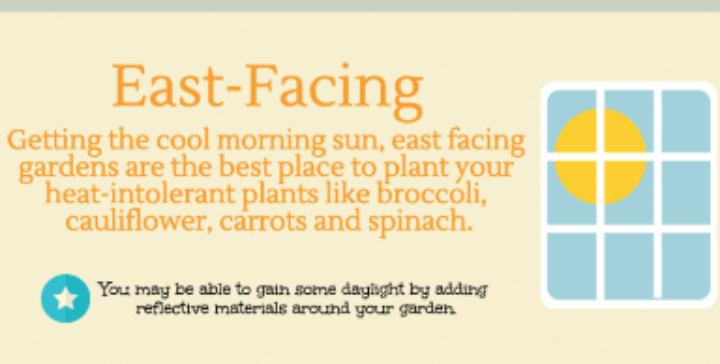 East-Facing