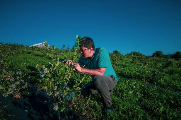 Foto: Anadolija/Mještani se bave poljoprivredom