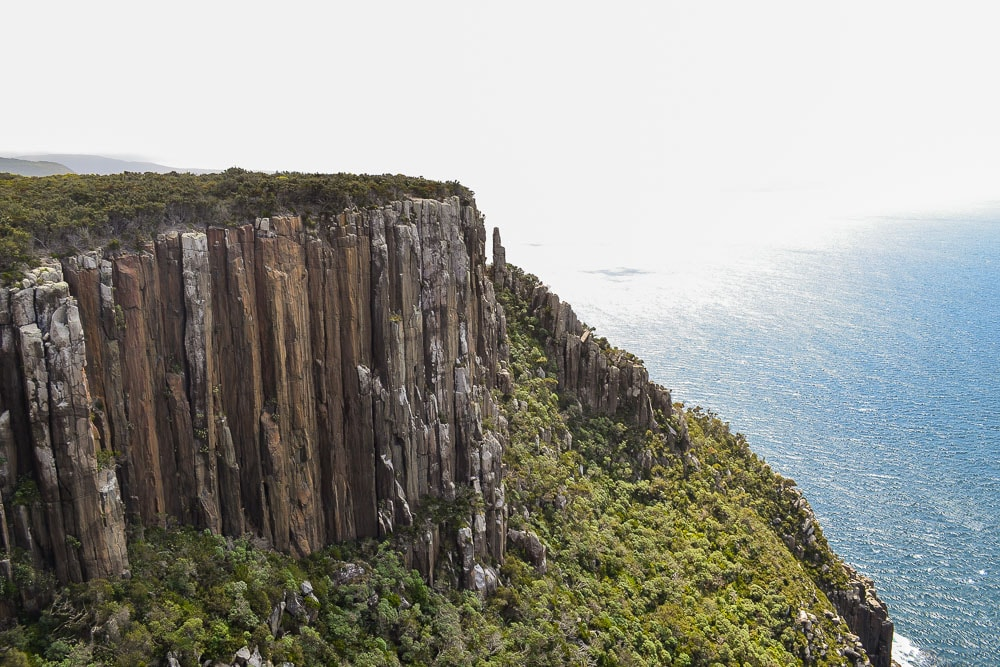 Let the Cliffs be your Guide // Cape Raoul (TAS) Dan Parkes, cliffs, ocean, bush, sunshine