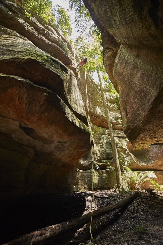 The Light At The Middle Of The Tunnel // Starlight Canyon (NSW) GUS ARMSTRONG Starlight Canyon, climber, canyon, trees