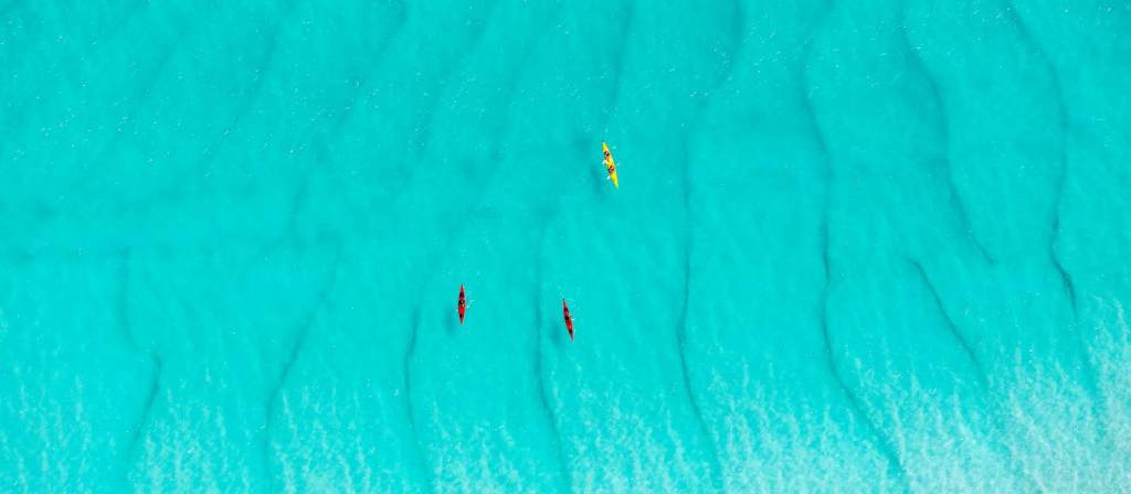 salty dog kayaking whitsundays