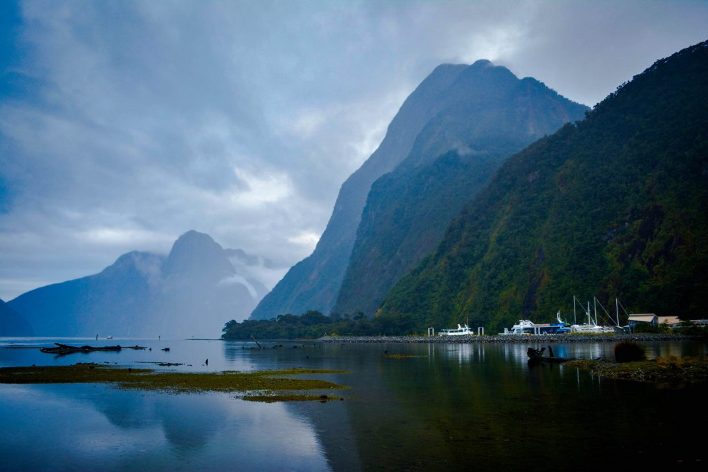 Lisa Owen Te Anau - Milford Highway Hikes Milford Sound