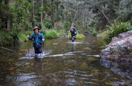 10 Hiking Lessons Learnt On The Green Gully Track (NSW), Rachel Dimond, wading, hikers, walking sticks, river