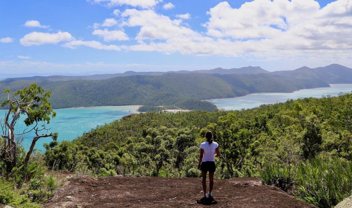 Camping The Whitsundays // Cairn Beach Campground (QLD), Solaye Snider, whitsunday cairn, trees, ocean, view