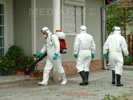 Autorităţile sanitar-veterinare din judeţul Braşov sunt în alertă după focarul descoperit în Zărneşti